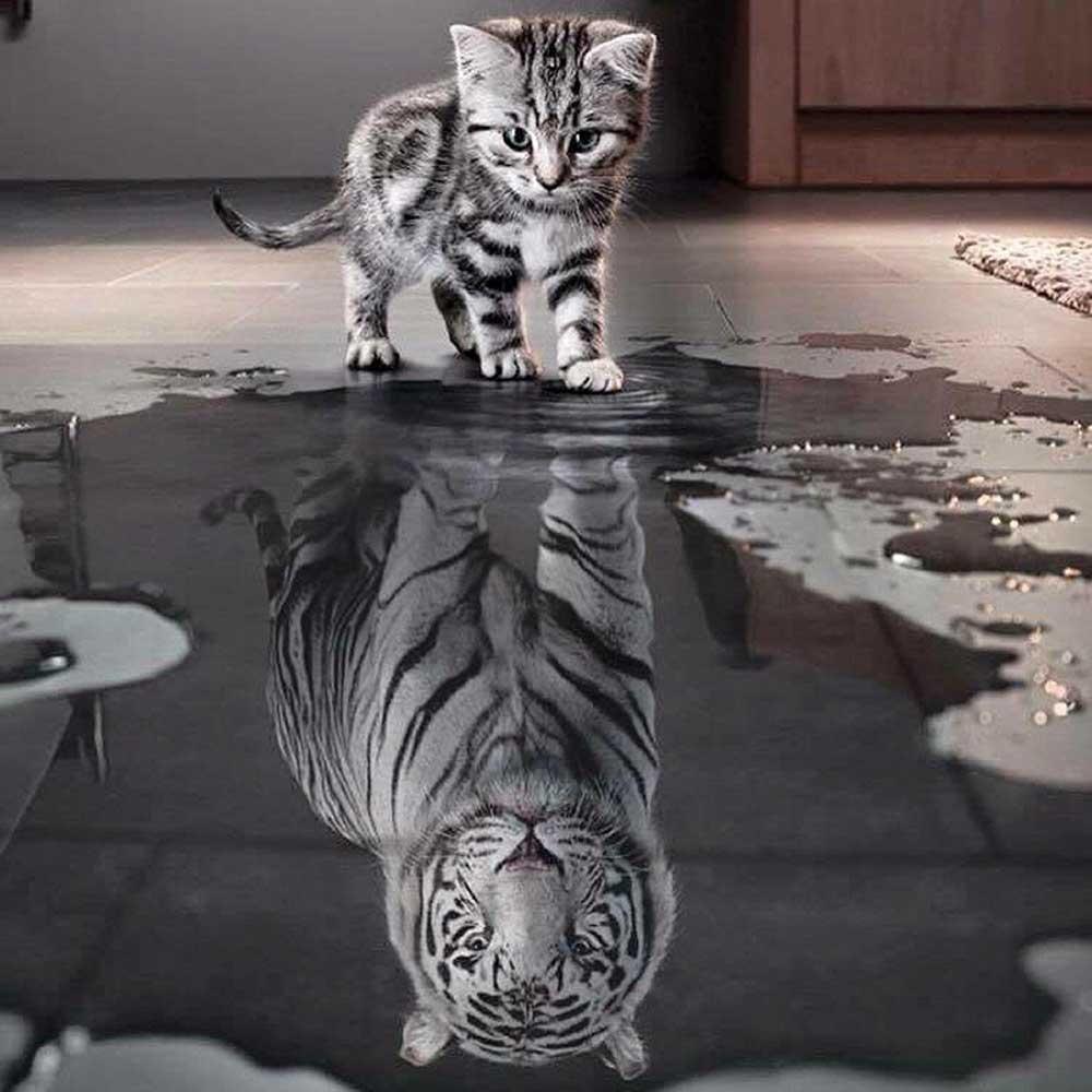 Как повысить самооценку и уверенность в себе